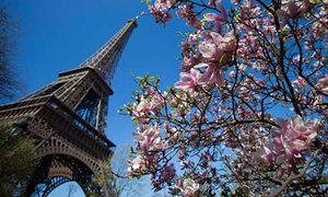 The-Eiffel-Tower-in-Paris-008